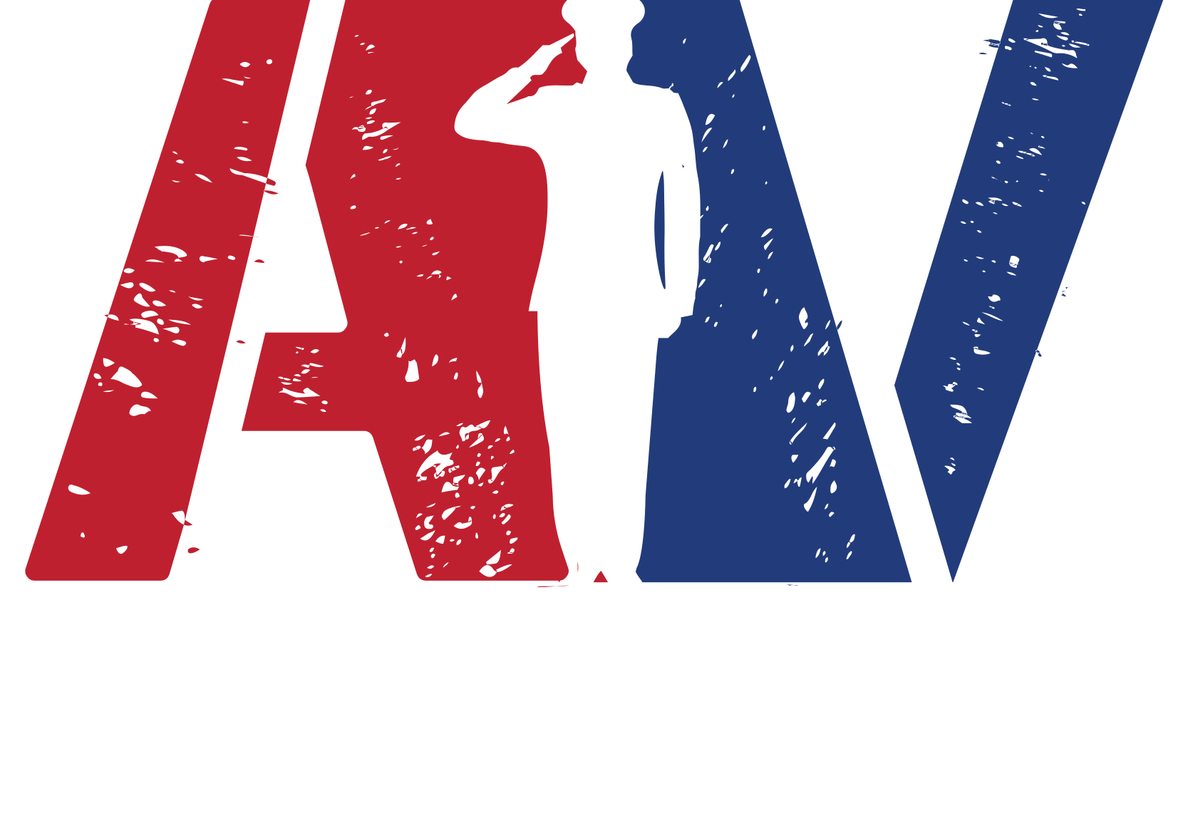 AlphaVets, Inc. Serivce-Disabled Veteran-Owned Woman-Owned